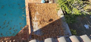 WASH ME - GUTTER CLEANING - 20201207_101339