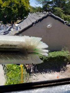WASH ME - WINDOW AND SOLAR PANEL CLEANING - 20180613_132507